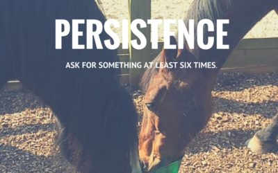 Persistence: Ask At Least Six Times For Exactly What You Want