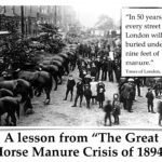great-horse-manure-crisis