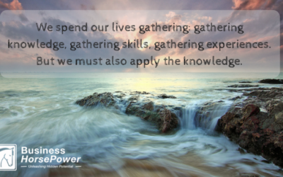 Are You Applying The Knowledge You Learn?